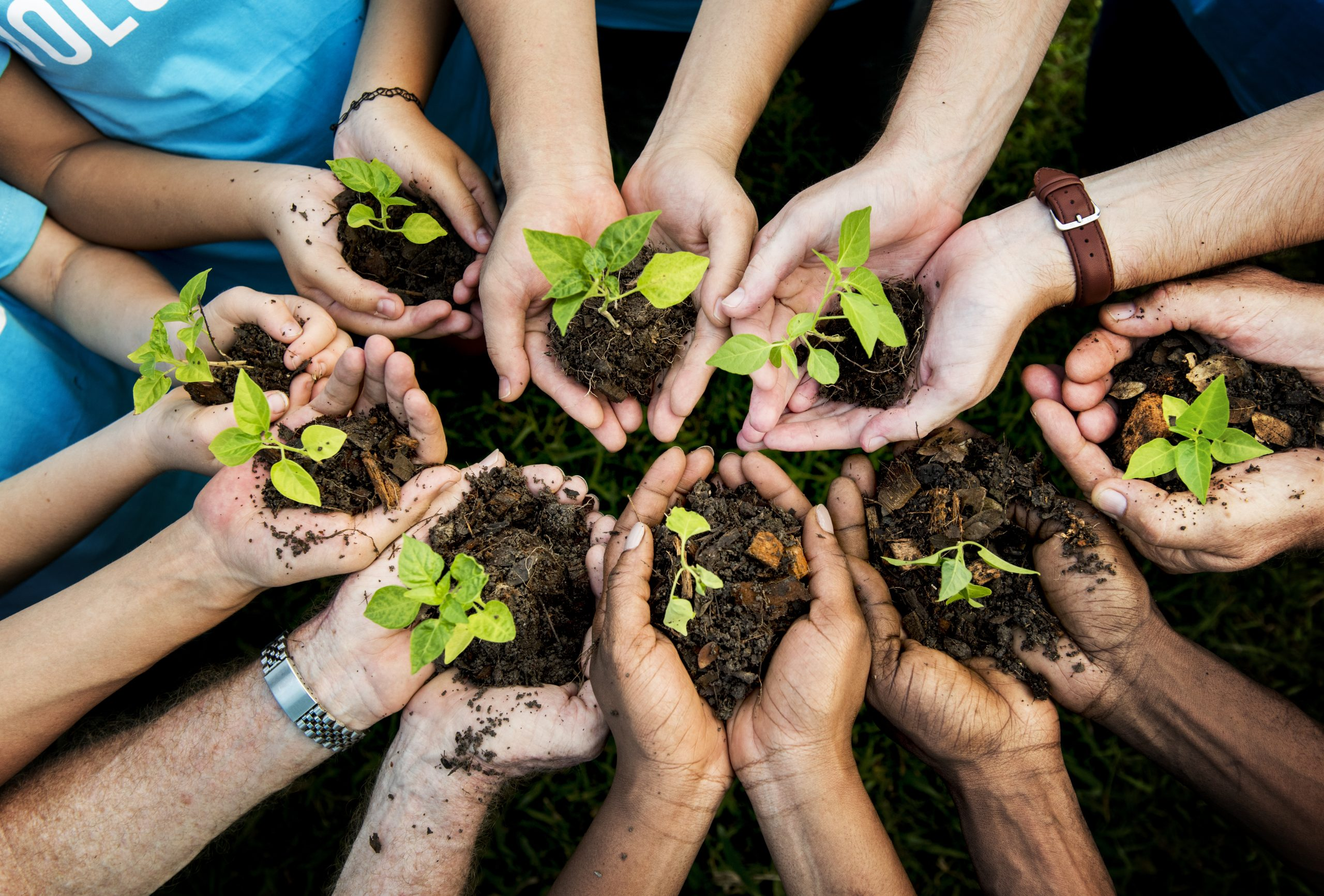 Gasmar patrocina programa para capacitar a profesores locales en la promoción de conductas ambientalmente sostenibles